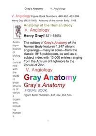 그레이아나토미 해부학의 제5권 혈관학의 도해 그림책.Gray's Anatomy,V. Angiology .FIGURE BOOK.by Henry Gray.