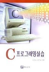 C 프로그래밍실습