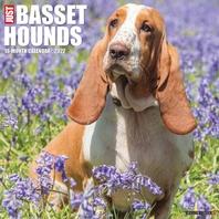 Just Basset Hounds 2022 Wall Calendar (Dog Breed)