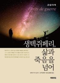 생텍쥐페리, 삶과 죽음을 넘어(큰글자책)
