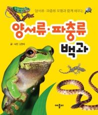 모형과 함께 배우는 양서류·파충류 백과