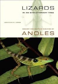 Lizards in an Evolutionary Tree, 10