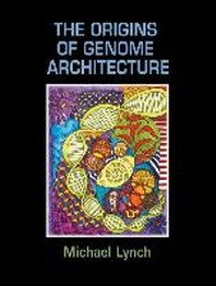 The Origins of Genome Architecture