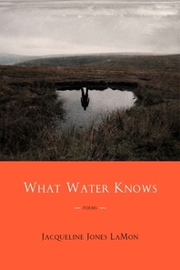 What Water Knows