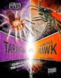 Tarantula Vs Tarantula Hawk