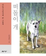 떠돌이 개(큰글자책)