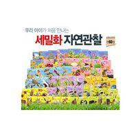 사은품증정 헤밍웨이/ 최신판 세밀화 자연관찰 (전60권)
