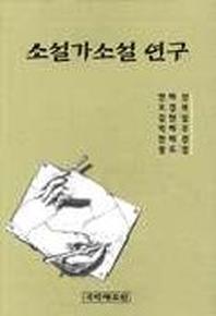 소설가소설 연구