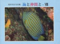 海と仲間と 荒井雪江寫眞集 8