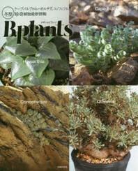 ビザ-ルプランツ ケ-プバルブからハオルチア,コノフィツムまで冬型珍奇植物最新情報