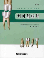 치아형태학(제3판)