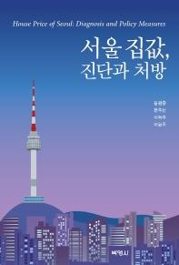서울 집값, 진단과 처방