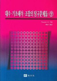 대수 기초해석 조합의 탐구문제들(상)