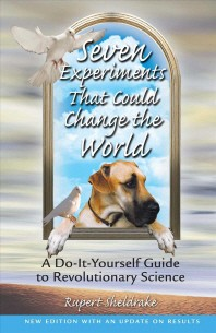 Seven Experiments That Could Change the World