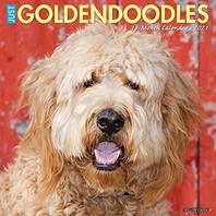 Just Goldendoodles 2021 Wall Calendar (Dog Breed Calendar)