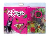 곤충 모형과 함께 배우는 곤충백과