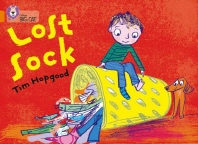 The Lost Sock