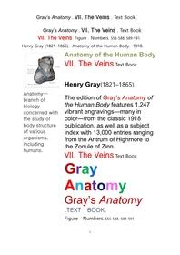 그레이아나토미 해부학의 제7권 정맥 책Gray's Anatomy . VII. The Veins . Text Book.by Henry Gray.