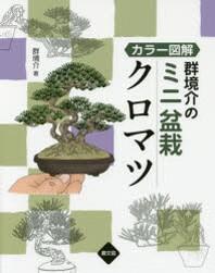 群境介のミニ盆栽クロマツ カラ-圖解