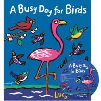 노부영 A Busy Day for Birds (원서 & CD)