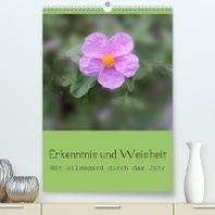 Erkenntnis und Weisheit - Hildegard von Bingen (Premium, hochwertiger DIN A2 Wandkalender 2022, Kunstdruck in Hochglanz)