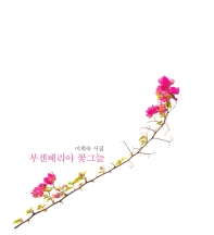 부겐베리아 꽃그늘