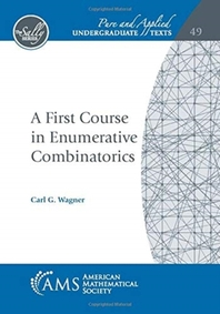 A First Course in Enumerative Combinatorics