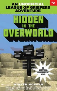 Hidden in the Overworld, 2