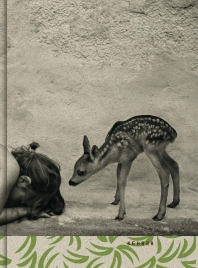 Summer of the Fawn