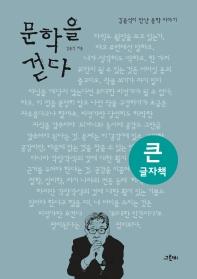 문학을 걷다(큰글자책)