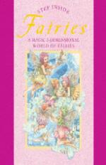 Fairies : A Magic 3-Dimensional World of Fairies