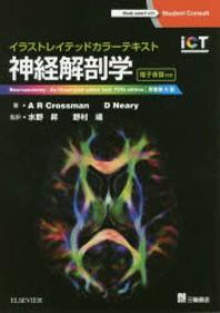 神經解剖學 イラストレイテッドカラ-テキスト