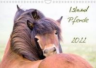Islandpferde (Wandkalender 2022 DIN A4 quer)