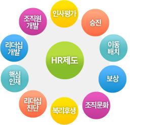 HR제도 : 인사평가, 승진, 이동배치, 보상, 조직문화, 복리후생, 리더십진단, 핵심인재, 리더십개발, 조직원개발