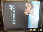 액토즈소프트 / 스카이 판타지 라제스카 - 하늘에서 펼쳐지는 새로운 세상 -06년.초판
