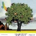 드래곤 애쉬 (Dragon Ash) - Harvest (일본 수입반) [일본반, OBI 없음, 광고용 인서트지와 스티커 포함]
