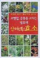(새책수준) 고혈압, 중풍을 고치는 발효액 산야초 효소 - 보급판