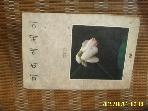청년사 / 미학에세이 / 주균도 지음 유홍준 편역 -88년.초판.설명란참조