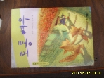 사계절 / 토통 여우 / 이마에 요시토모. 김용철 그림 -99년.초판