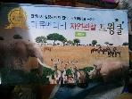 한국슈바이처 다큐멘터리자연관찰트윙클 100권/미개봉새책