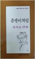 좀팽이처럼 - 김광규 시집 (문학과지성 시인선 73)