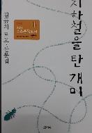 지하철을 탄 개미 - 김곰치 르포 산문집 (초판2쇄)