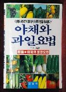 야채와 과일요법-이상국