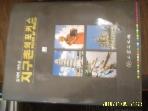 삼보문화사 / 지구촌의 포커스 (상) / 김석배 사진집  -96년.초판.아래참조