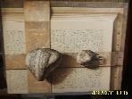 서울옥션 / 제112회 서울옥션 미술품 경매 - 2008.12.16 / 사진참조. 아래참조