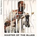 muddy waters - master of the blues