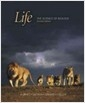 Life, the Science of Biology (Hardcover, 7th)