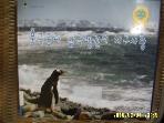 부산과학기술협의회 / 북극곰과 남극펭귄의 지구사랑 / 박수현 지음 - 꼭 아래참조