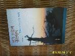 수문출판사 / 산을 오르며 생각하며 - ... 산사랑 이야기 / 백인환 지음 -03년.초판
