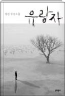 유랑자 - 우리는 여러 생을 사는 유랑하는 존재들 정찬 장편소설 1판2쇄